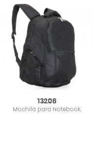 13206