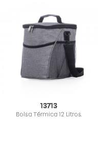 13713